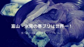 富山県 氷見の寒ブリ